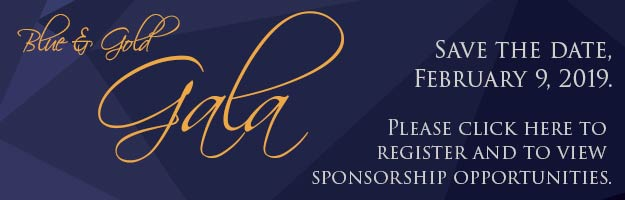 blue-and-gold-gala-banner-small-register